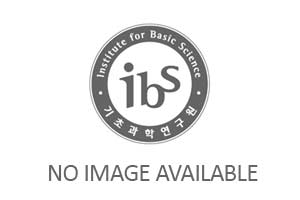 IBS Research Highlights & Analysis 사진